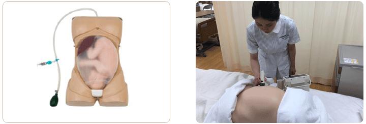 妊婦腹部触診モデル